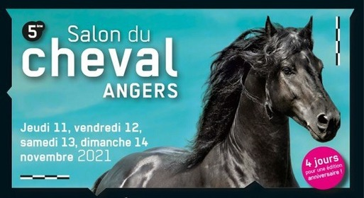 Le salon du Cheval (11 au 14 Novembre 2021)
