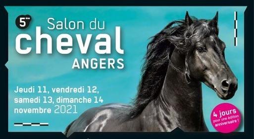 Salon du cheval Angers (11-14 November)